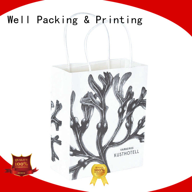 Well Packing & Printing logo printed printed paper bags light-weight bulk supply