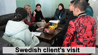 Swedish Packaging Client's Visit