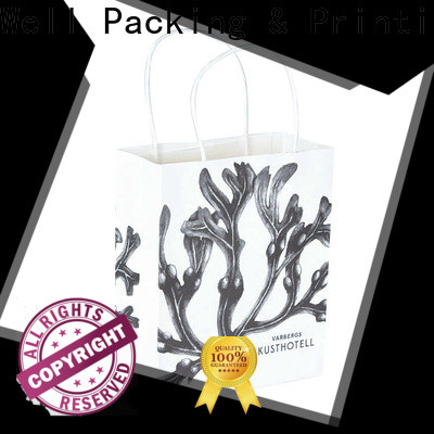 Well Packing & Printing paper bags wholesale light-weight with handle