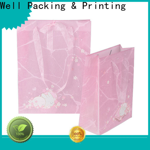 Well Packing & Printing best pp bag manufacturer large capacity for women